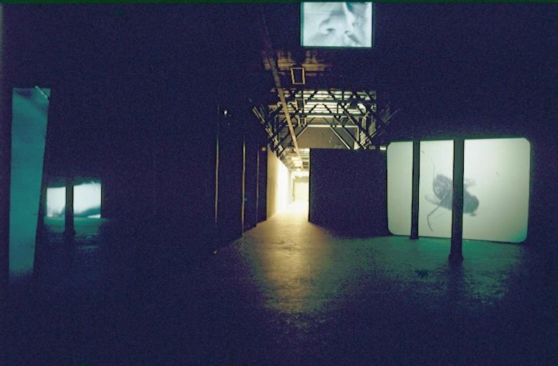 Douglas Gordon : Een vijftal video-installaties uit 1995 in de grote projectzaal, en de geluidssculptuur 'Something between my mouth and your ear' uit 1994 in de camera obscura