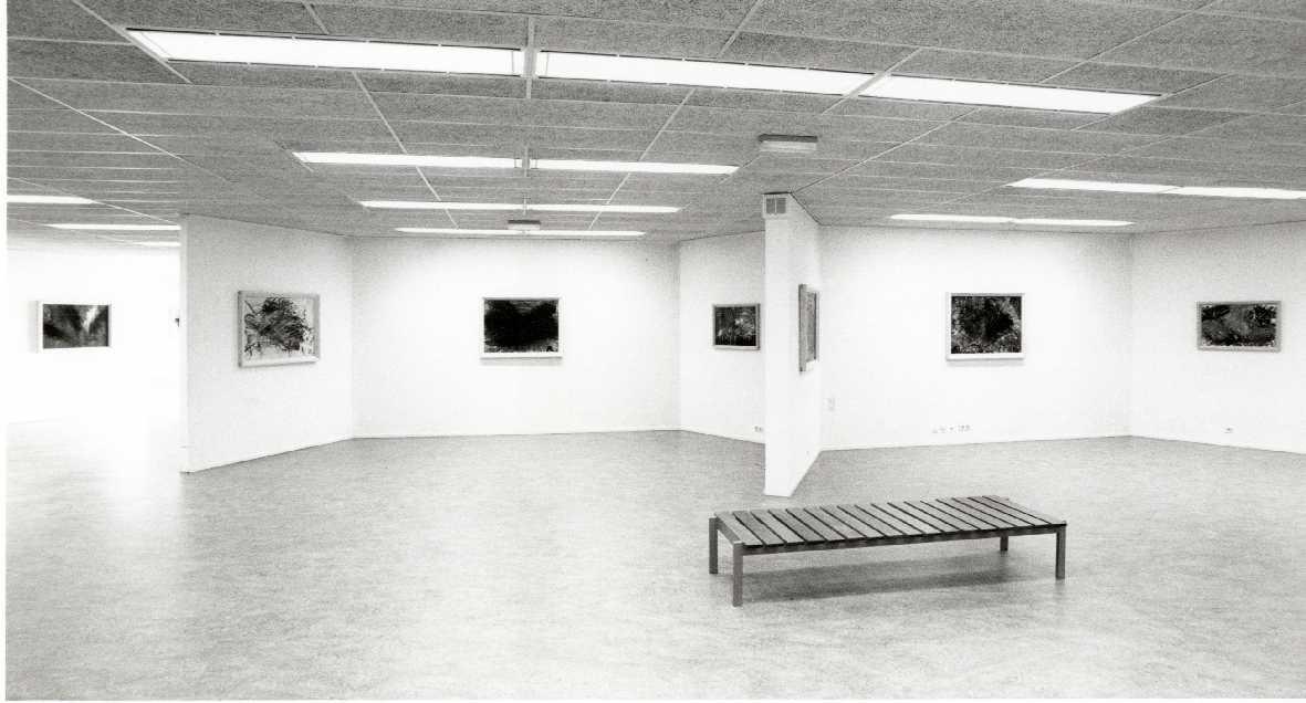 Arnulf Rainer : Schilderingen