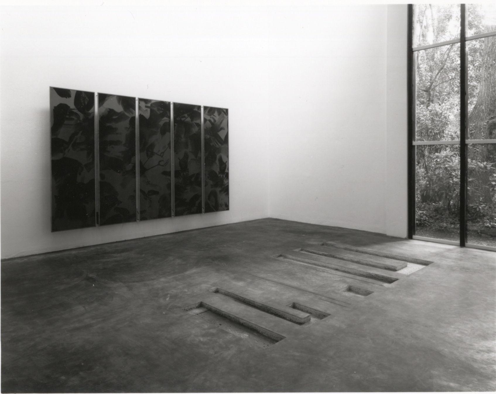 Niek Kemps : Jan Vercruysse : Biennale di Venezia 1993 :
